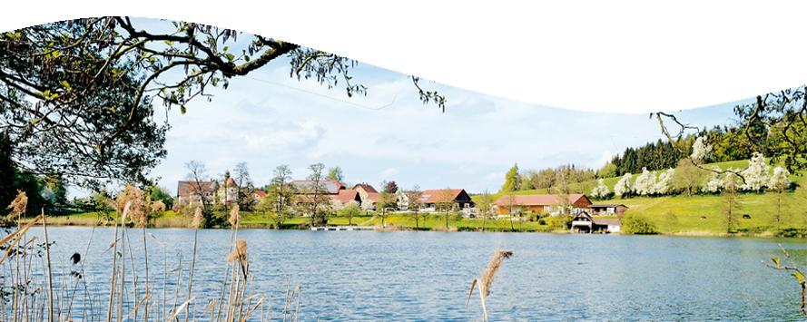 Ferien Auf Dem Bauernhof Hofgut Schleinsee Ferienwohnungen Am